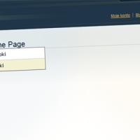Magento – pionowe menu oparte na kategoriach produktów.